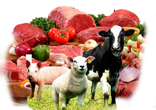 Livestock and meat prices