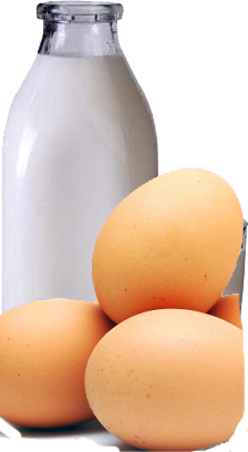 Milk , milk products and eggs prices